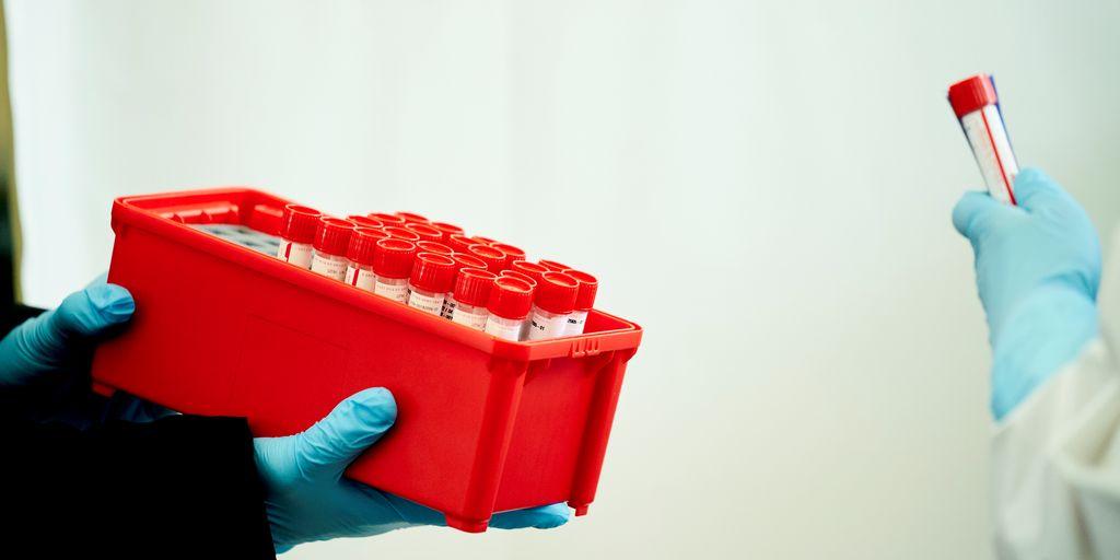 Budstikka: Koronatestere kan ha spredt smitten på sykehjemmet